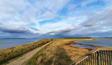 Gyldensteen Strand - fra havbund til landbrug og tilbage igen