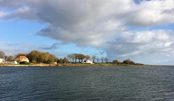 Hjarnø i Horsens Fjord