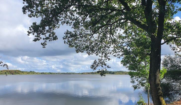 Hjertestien rundt om Karlsgårde Sø