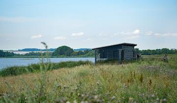 Birkesø i Lille Vildmose