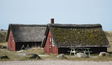 Esehusene ved Nymindegab