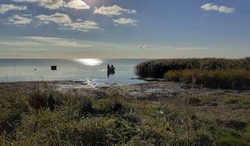 Fiskerhusene
