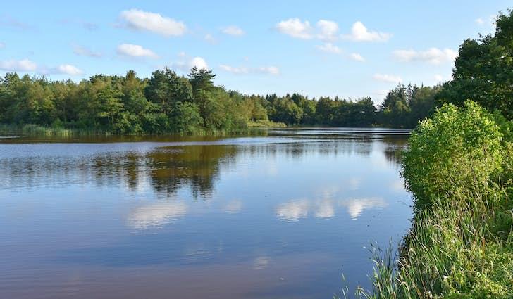 Svanholm Sø