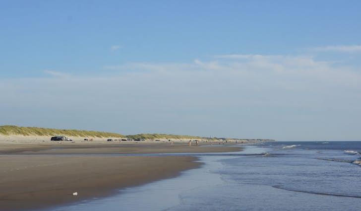 Vejers strand og klitplantage